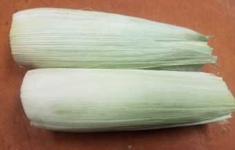 corn cut