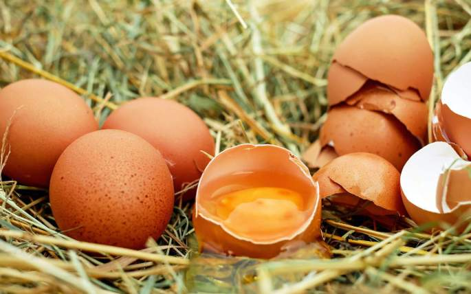 Pasture-raised eggs in hay with one of them cracked open to expose orange yolk.