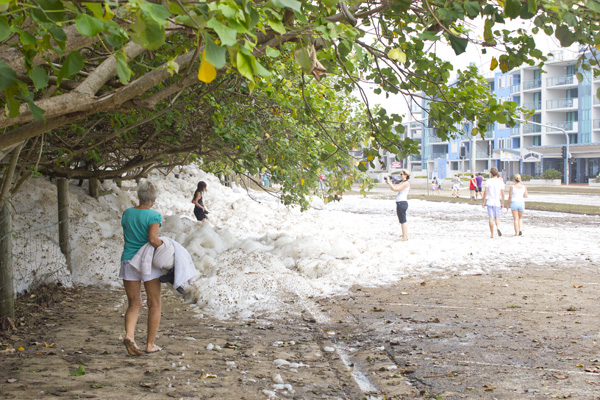 more gross tree foam