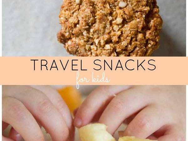 Travel snack ideas for kids on the go | Veggie Mama