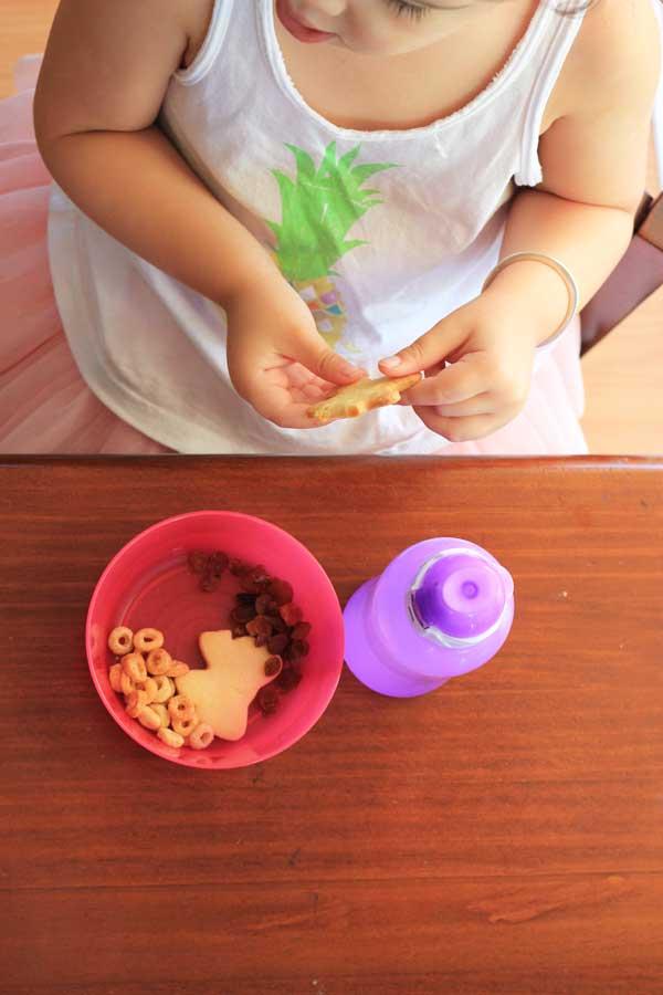 kid-food-snack-sugar-cookies-and-sultanas