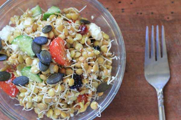 Sprouted lentil salad with lemon recipe | Veggie Mama