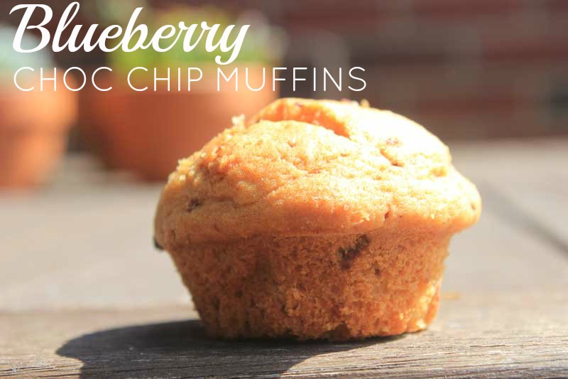 Blueberry-Chocolate-Chip-muffin-with-coconut-sugar