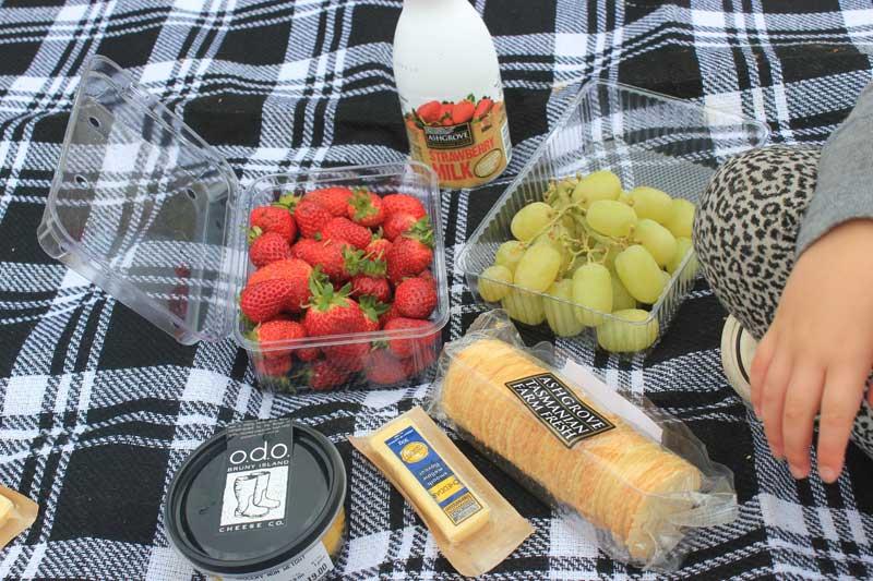 road-trip-picnic