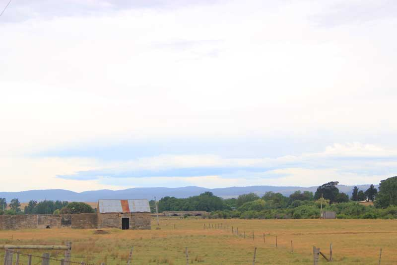tasmania-road-trip-2