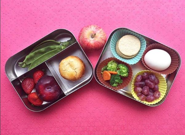 Which Lunch Box is the Best?