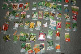 my seed collection