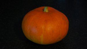 first pumpkin of 2017