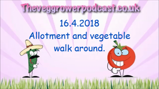16.4.2018 Allotment and vegetable patch monthly walk around.