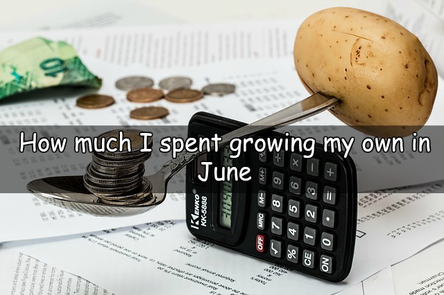 Let's take a look at how much did I spend growing my own throughout June.