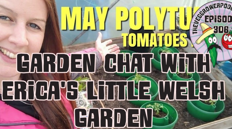 In today's podcast I am joined in the podding shed by Youtuber Erica's little welsh garden.