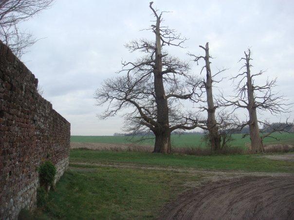 hougoumont-farm-2