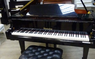 Piano 1/4 de queue WENDL AND LUNG