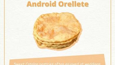 "Photo of שמועה: רגע לפני ההכרזה גוגל בחרה בשם ""Orellete"" עבור Android O"