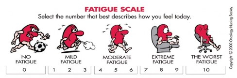 zz fatigue