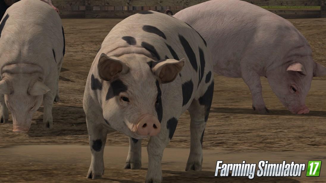 1472807969-cochon-06-logo