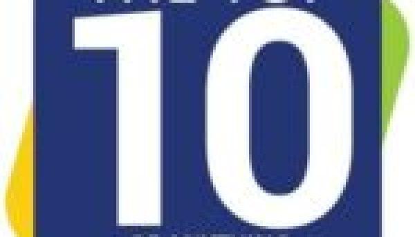 Barn Owl in a Drain