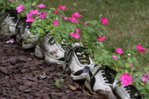 Old trainers all in a line turned into a shoe planter
