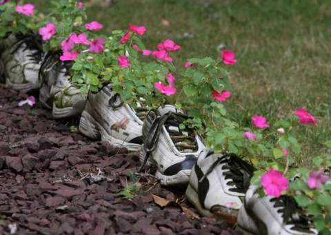 Top 10 Best Images of Shoe Planters