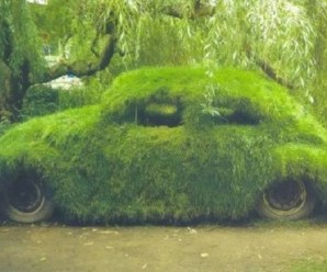 Ten Ways to Use Old Volkswagen Beetles in the Garden