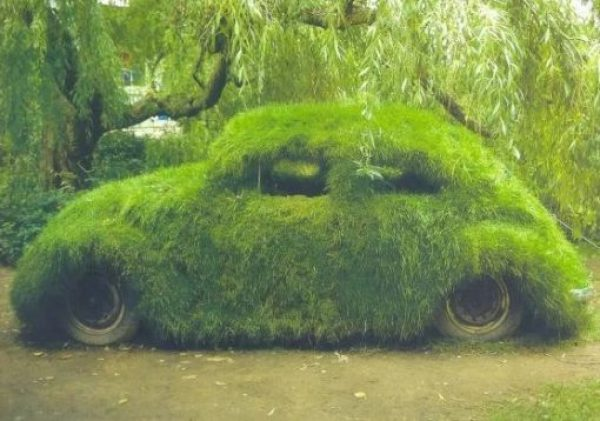 Volkswagen Beetle Covered in Grass