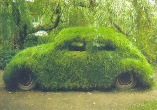 Volkswagen Beetle Covered in Grass