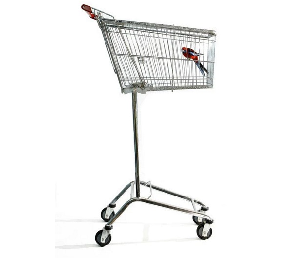 Shopping Trolley Birdcage