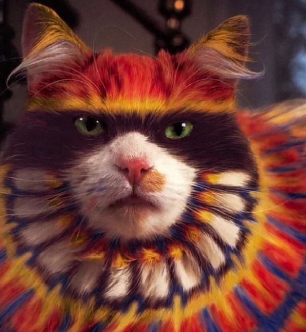 Cat painted to look like a tribal American Indian