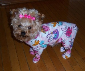 Ten Animals in Pyjamas Who Are Just About Ready for Bed
