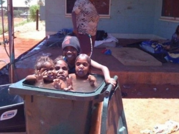 Swimming Pool Made With a Wheeley Bin