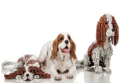 Ten Amazing Dog Sculptures Made From Bicycle Chains