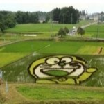 Ten of the Very Best Examples of Rice Paddy Tanbo Art