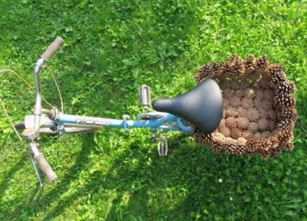 Pine Cones Turned into basket for bicycle