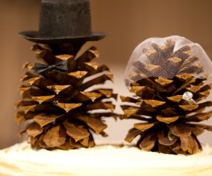 Ten Amazing and Unusual Things to Do With Pine Cones