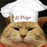 Ten Celebrity Chef Cats Cooking for the Whole Family