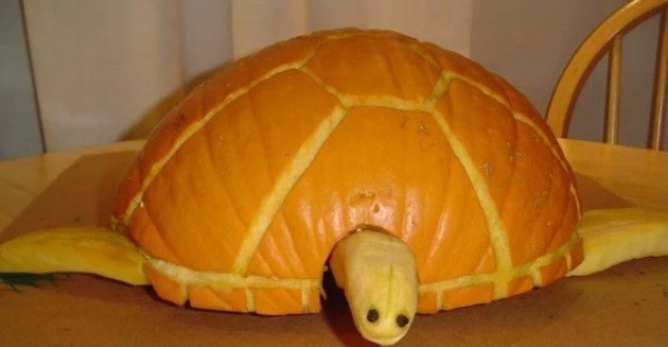 Pumpkin/Jack-o-lantern that looks a Sea Turtle