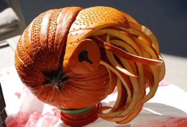 Pumpkin/Jack-o-lantern that looks a Nautilus