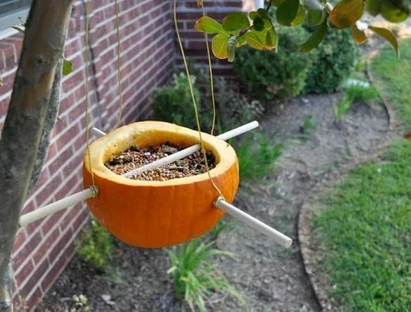 Things to do With Pumpkins After Halloween: Pumpkin Bird Feeder