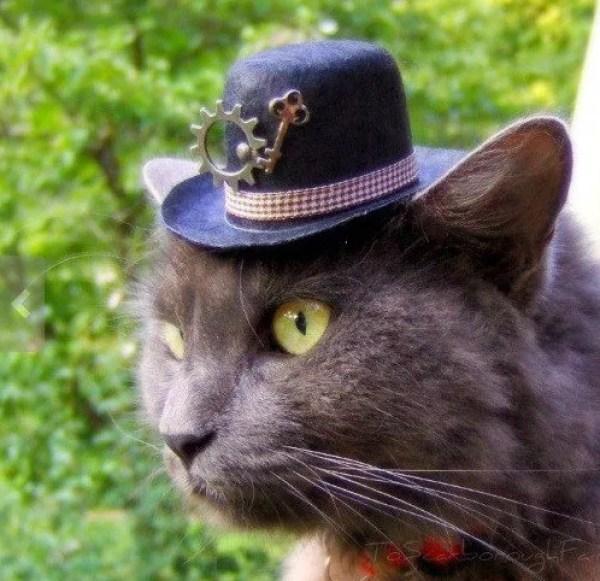 Steampunk Inspired Hat