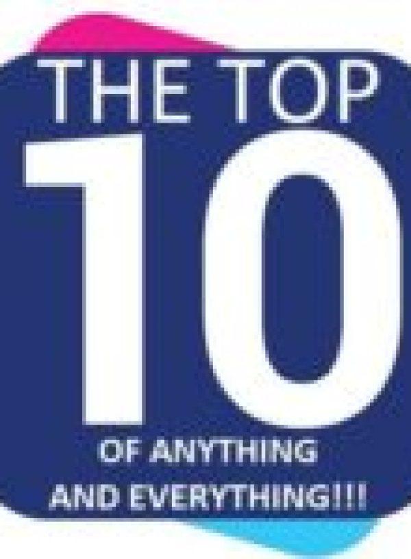 Camel in a Christmas Santa Hat
