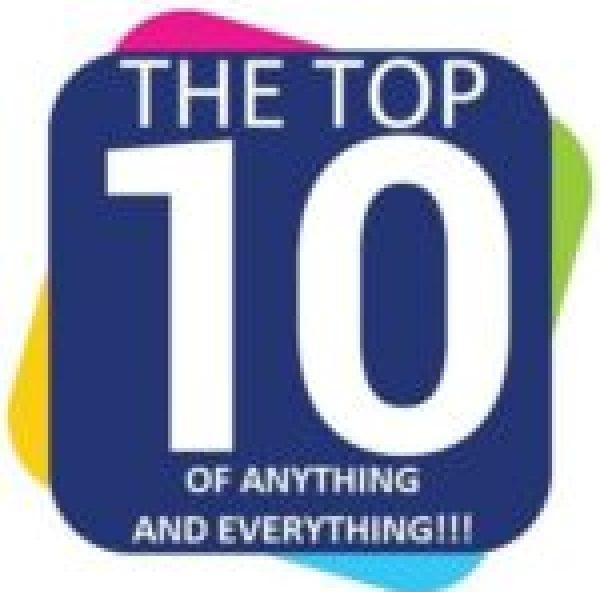 Owl in a Christmas Santa Hat
