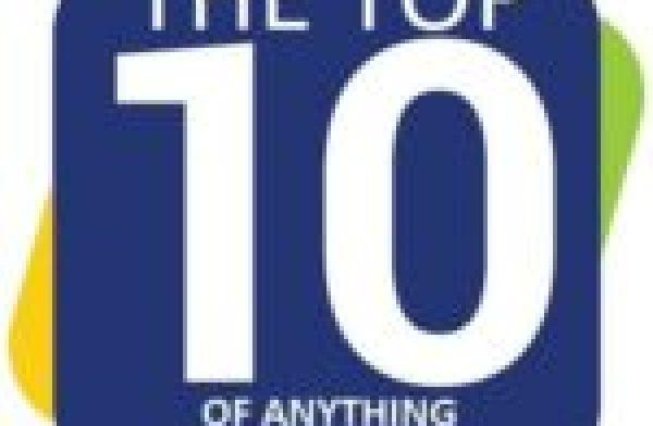 Hedgehog in a Christmas Santa Hat