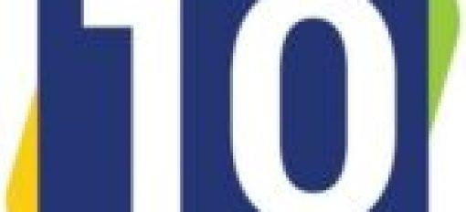 Fairy Berries Christmas String Lights