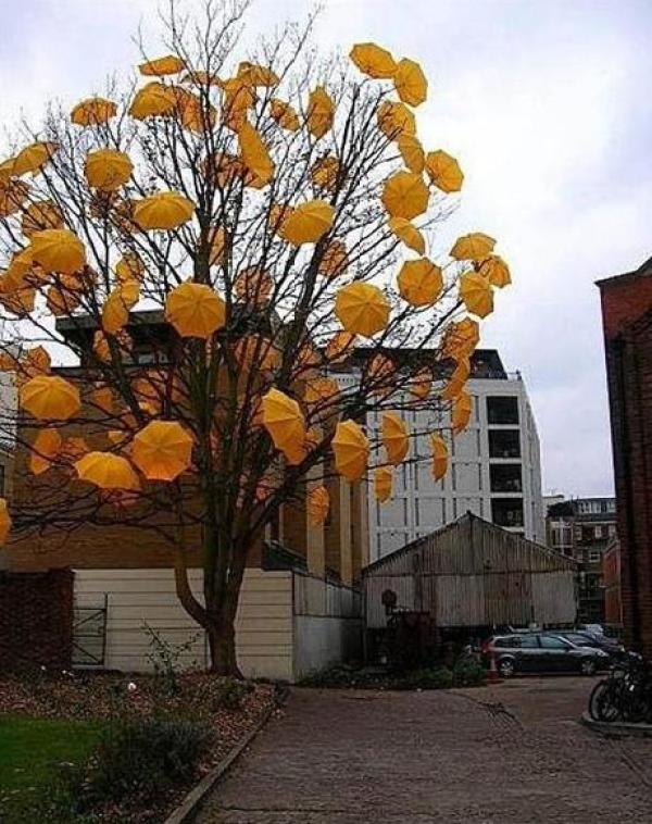 Tree covered in umbrellas