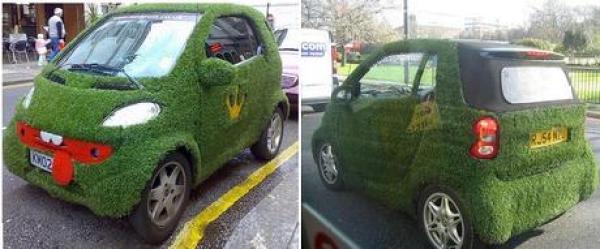 Smart Car Inspired grass