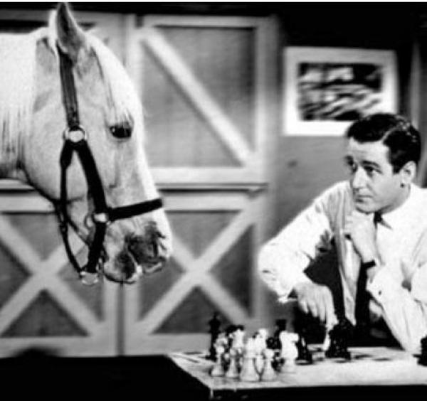 Horse playing Chess