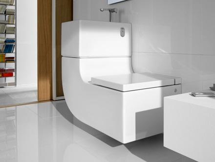 Designer Inspired toilet
