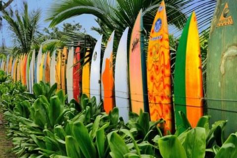 The World's Top 10 Most Unusual Fence