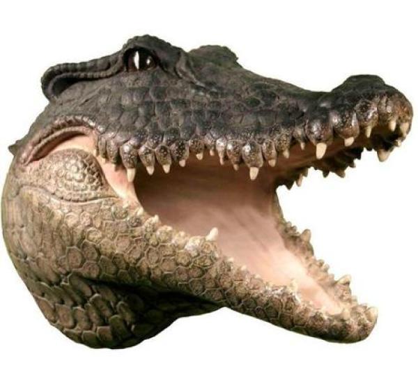 Wall Mounted Wooden Crocodile