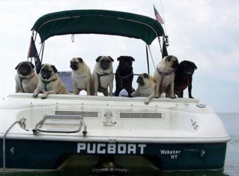 The World's Top 10 Best Funny Boat Names